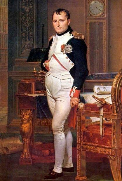 Napoleone celebrato dall'arte